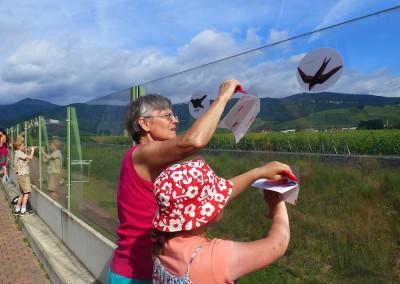 """Projet """"Attention l'oiseau aux tueurs invisibles !"""""""