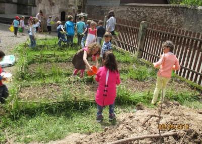 """Projet """"Le jardin de St Florent - les animaux amis du jardin et le bestiaire de la collégiale"""""""